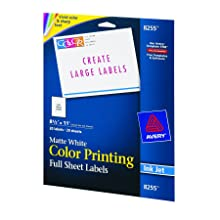 Avery Color Printing Labels for Inkjet Printers, Matte White, 8.5 x 11 Inch, Pack of 20 (08255)