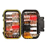 FISHINGSIR 120PCS Fly Fishing Flies Set Assorted Dry/Wet Flies Fly Fishing Lures with Waterproof Fly Box (Color: MUST-HAVE SERIES - 120PCS Flies Kit + Fly Box)