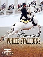 Nature: Legendary White Stallions