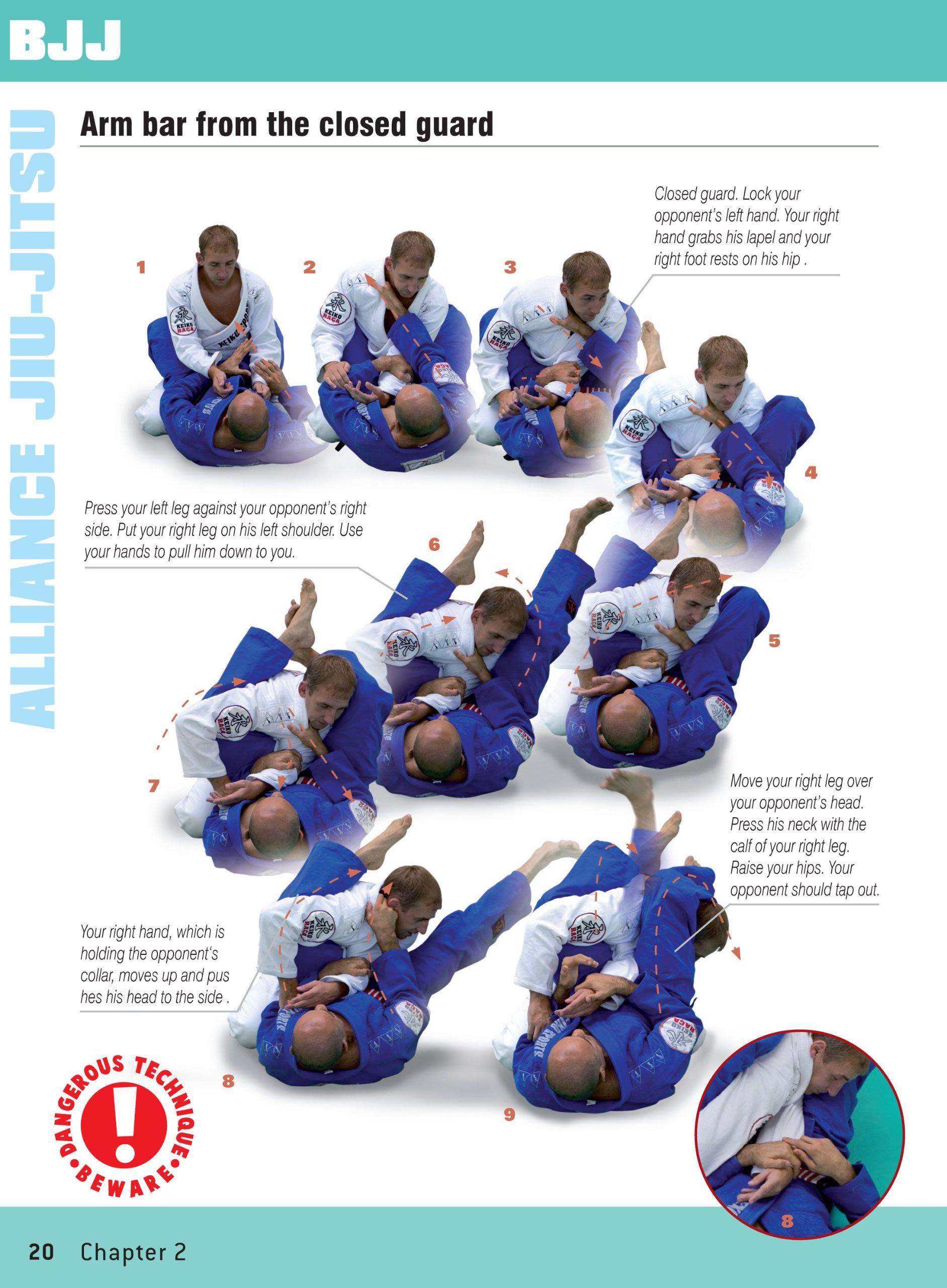 Brazilian Jiu Jitsu Techniques Brazilian Jiu Jitsu The