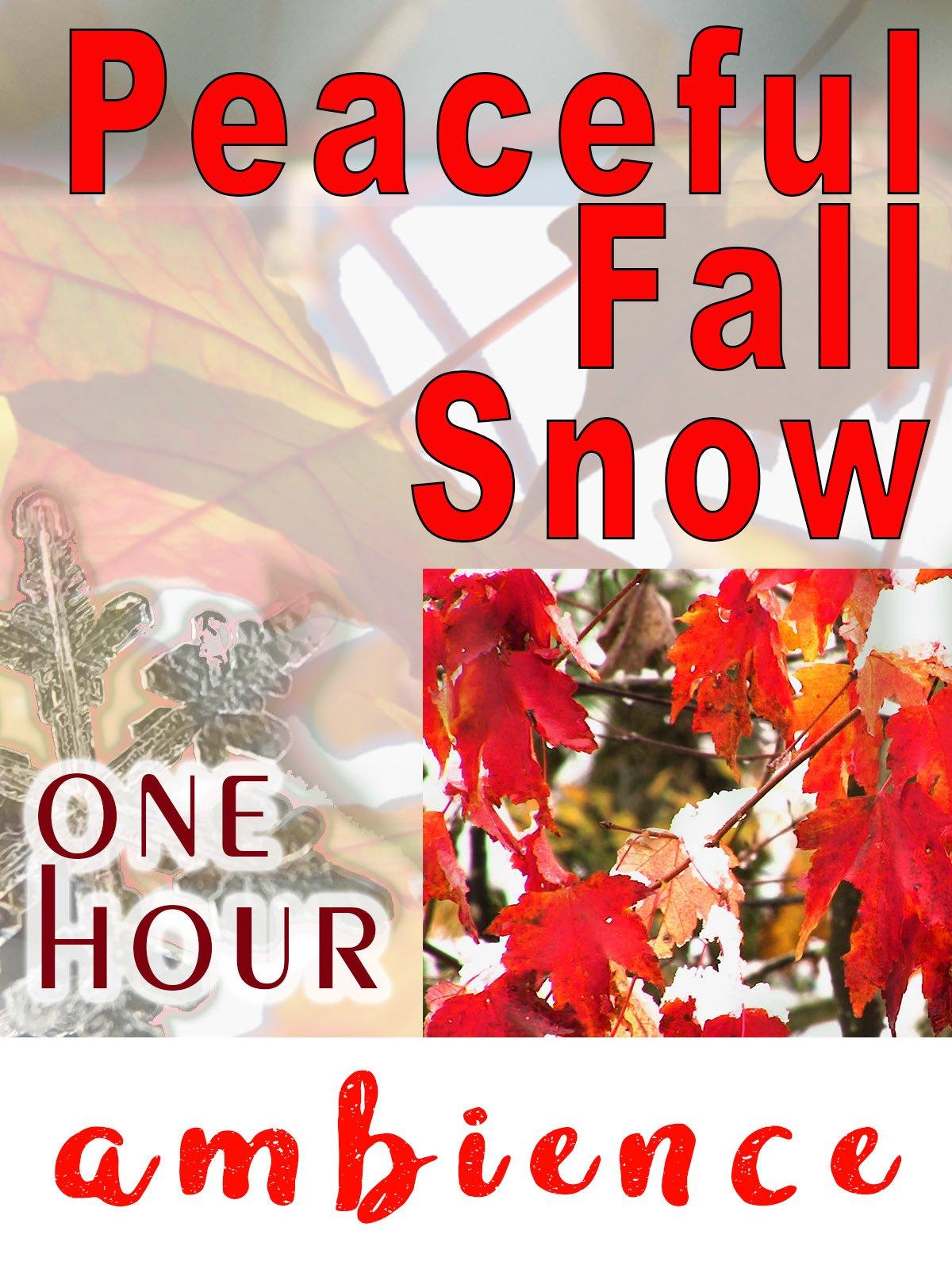 Peaceful Fall Snow
