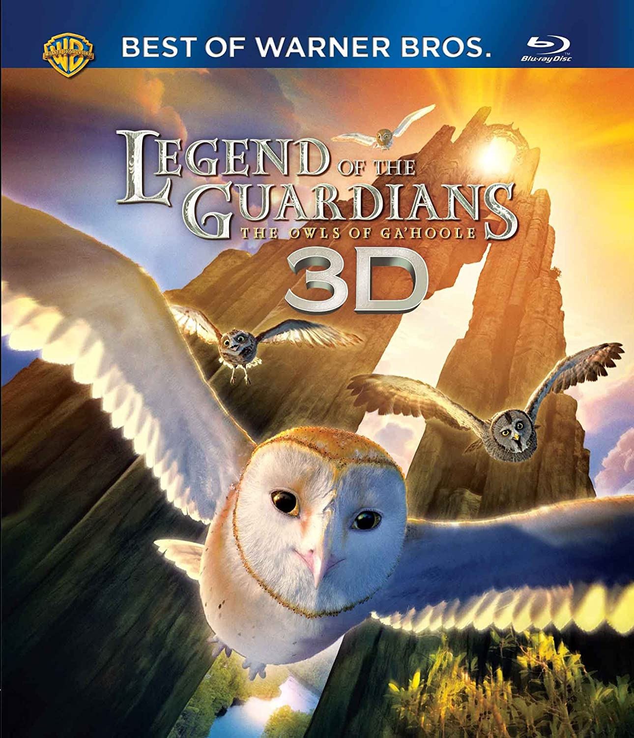 Amazon: Buy Legend Of The Guardians:the Owls Of Ga'hoole (3d) Dvd,  Bluray Online At Best Prices In India  Movies & Tv Shows