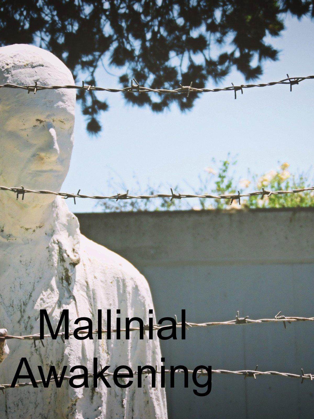 Mallinnial Awakening