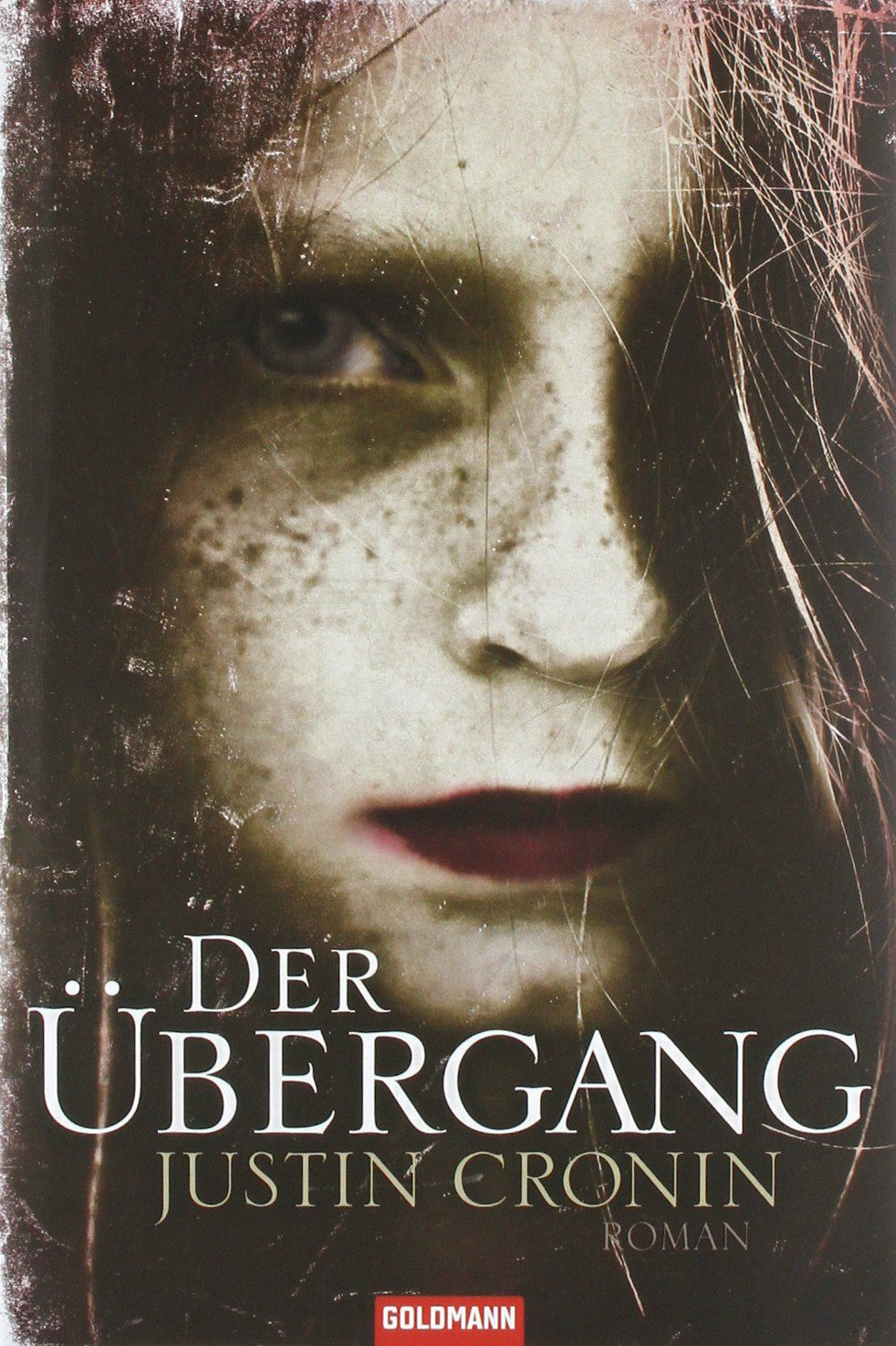 Der Übergang (The Passage, #1)