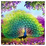 Adarl 5D DIY Diamond Painting Rhinestone Pictures of Crystals Embroidery Kits Arts, Crafts & Sewing Cross Stitch Peacock 4 (Color: peacock 4, Tamaño: 15.2