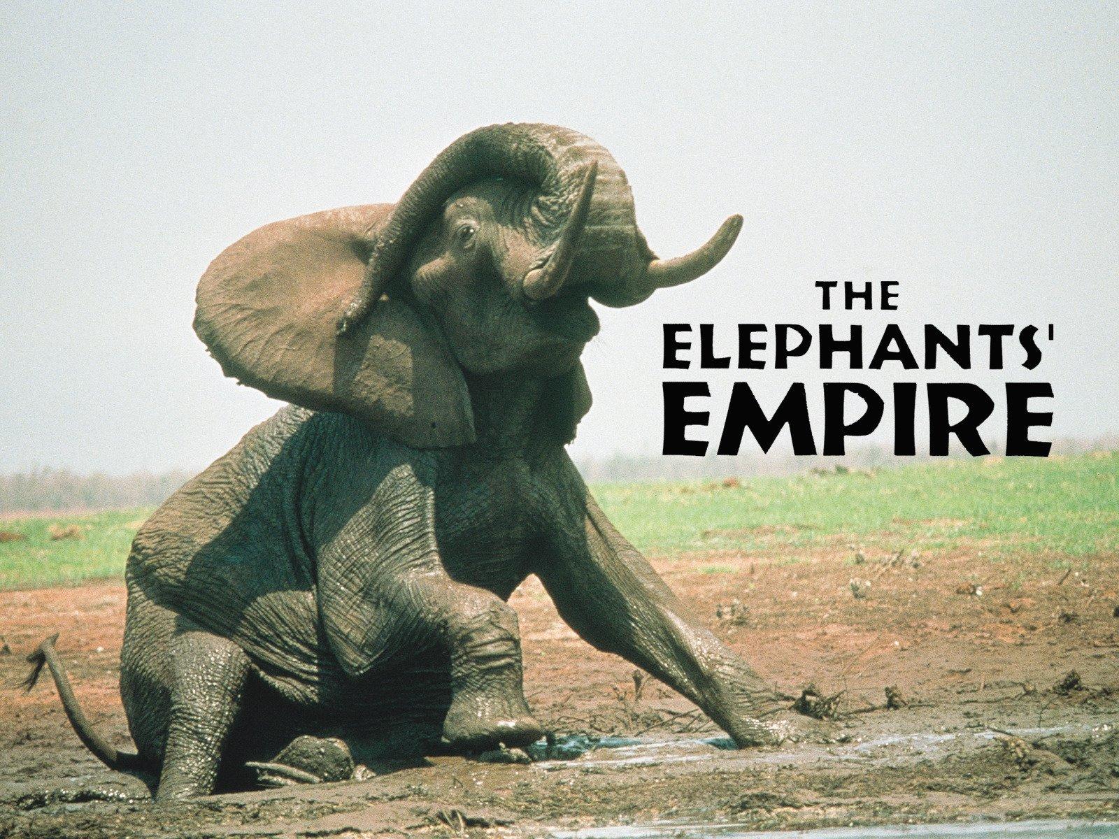The Elephants' Empire - Season 1