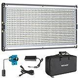 NEEWER BI-COLOR LED PROFESSIONAL VIDEO LIGHT PARA ESTUDIO - kit de iluminación para fotografía de video para exteriores de YouTube, marco de metal duradero, 960 perlas LED, 3200-5600K, CRI 95