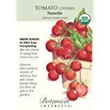 Vegetable Seeds - 30 Seeds of Sugar Sweetie Cherry Tomato - Organic