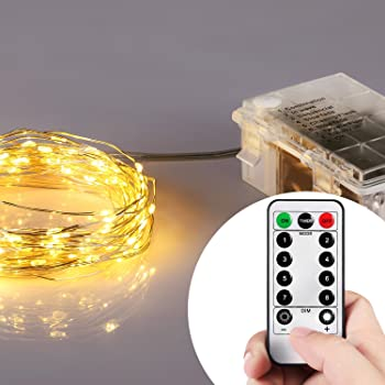 Homestarry Micro LED String Lights