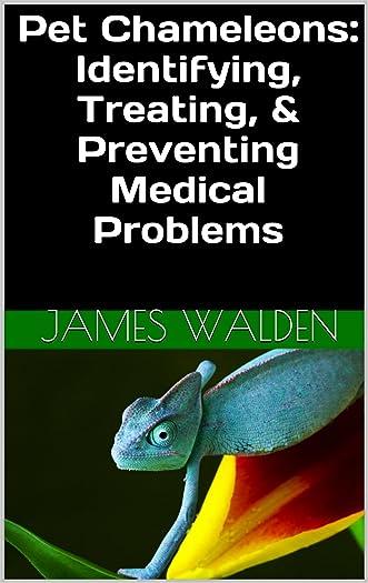 Pet Chameleons: Identifying, Treating, & Preventing Medical Problems