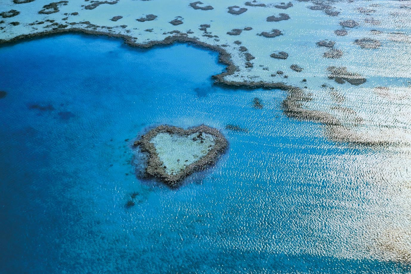 Great Barrier Reef puzzle Epoch