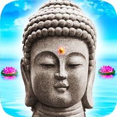 1500 Weisheiten: Sch�ne Zitate und Lebensweisen f�r jeden Anlass