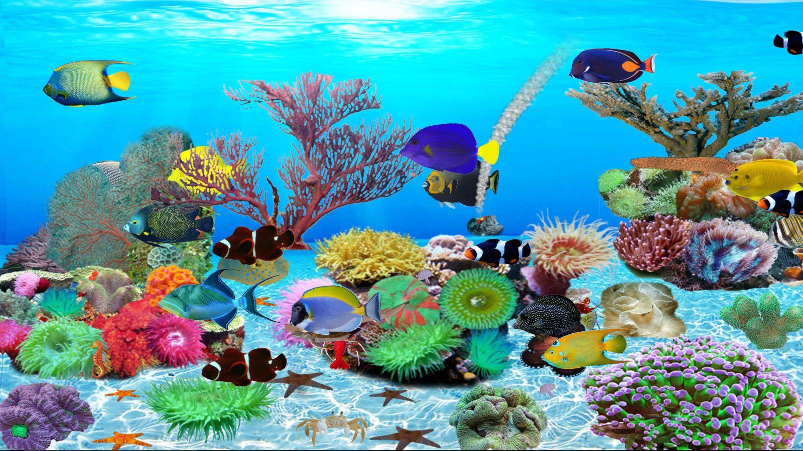 aquarium-du-monde-sous-marin-telechargement