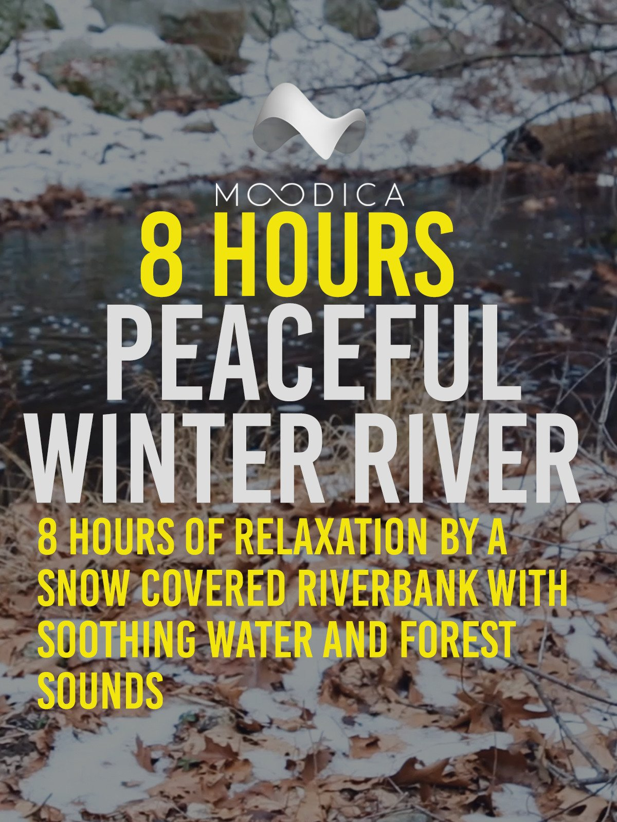 8 Hours: Peaceful Winter River: 8 Hours of Relaxation By A Snow Covered Riverbank With Soothing Water and Forest Sounds