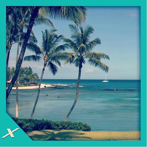 palms-shore-bring-hawaii-to-home