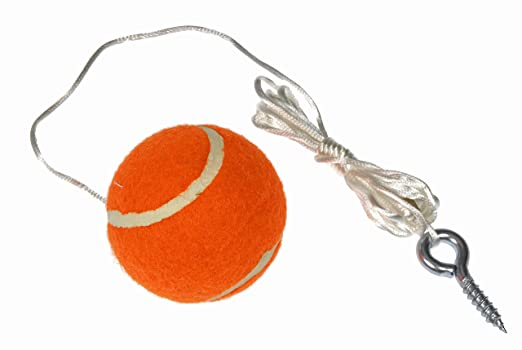 A Good Way To Hang Up A Tennis Golf Ball For Point Control