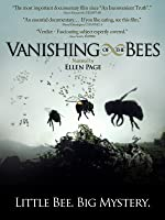 Vanishing of the Bees [HD]