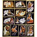 Homies Prismatic Pin-Up Girls Stickers Set of 12: Includes Fly Girl, Baby Doll, Shorty, Bouncy and More!!!