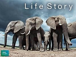 Life Story Season 1 [HD]