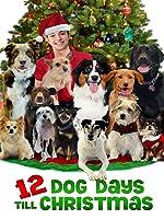 12 Dog Days Till Christmas [HD]