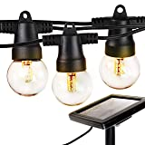 Brightech Ambience Pro - Waterproof Solar LED Outdoor String Lights – Hanging 1W Retro Edison Filament Bulbs - 27 Ft Globe Lights Create Bistro Ambience in Your Yard, Pergola (Color: G40 Bulb)