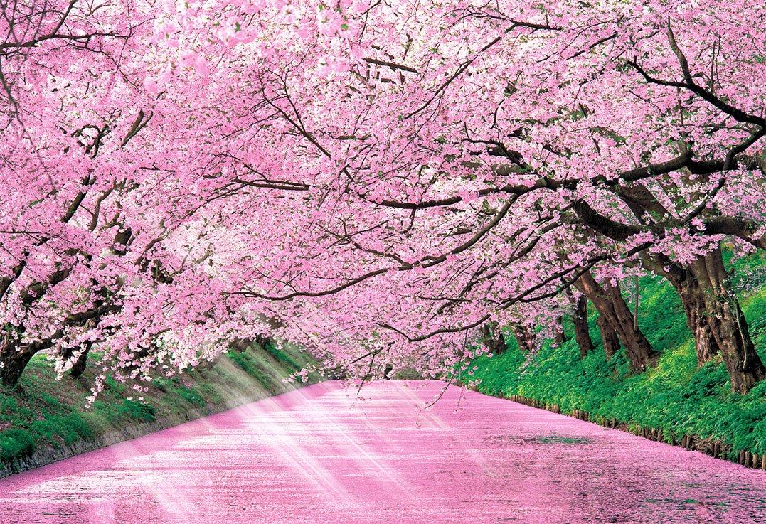 600ベリースモールピース 桜色の弘前城迹―青森 47-205