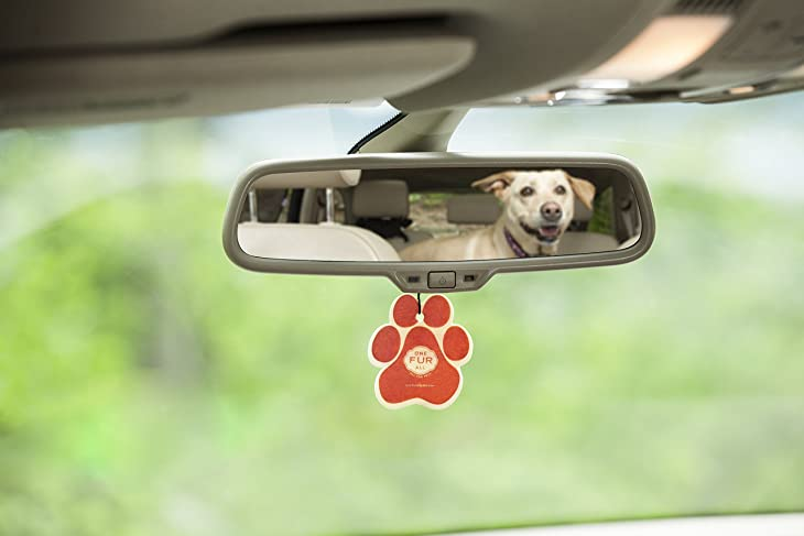 One Fur All Pet House Car Air Freshener