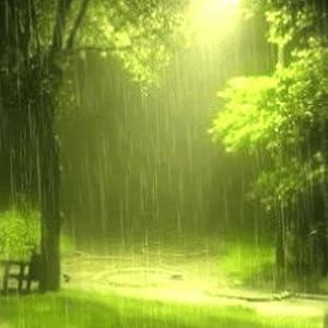 beautiful rain live wallpaper appstore for