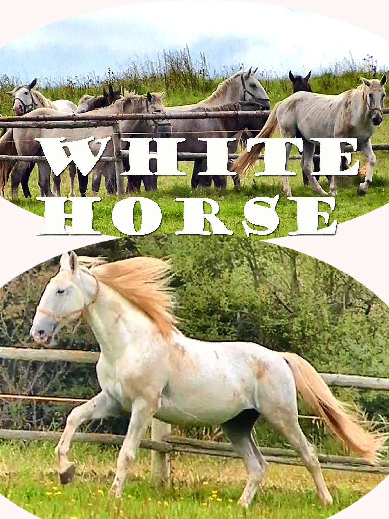 White Horse on Amazon Prime Instant Video UK