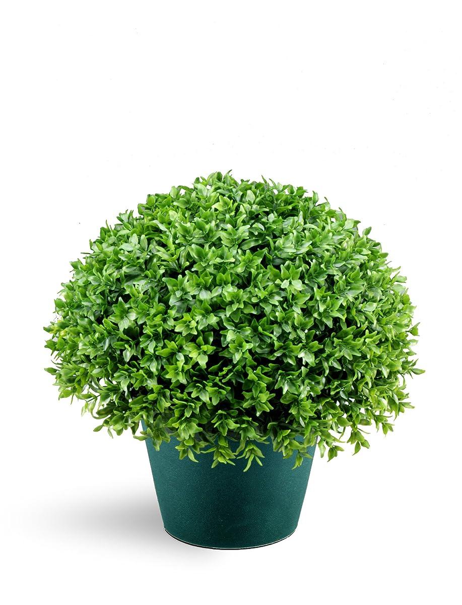 National Tree 13 Inch Globe Japanese Holly Bush in Dark Green Round Plastic Pot (LJB4-13-1)