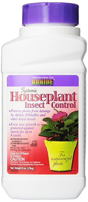 House Plant insect regulator to control fungus gnats