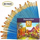 Acrylic Paint Brush Set, 6 packs/60pcs Nylon Hair Brushes for All Purpose Oil Watercolor Painting Artist Professional Kits (Color: 6 Packs/60 PCS)