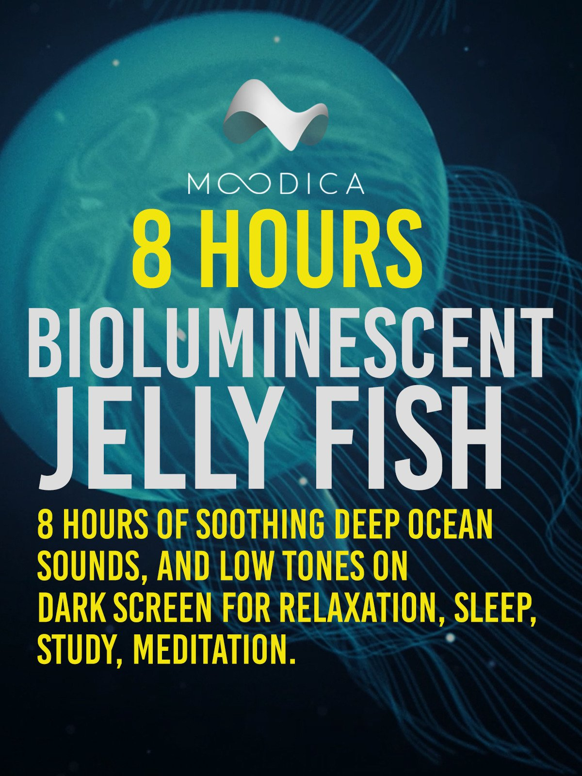 8 Hours: Bioluminescent Jelly Fish: 8 Hours of Soothing Deep Ocean Sounds, and Low Tones on Dark Screen for Relaxation, Sleep, Study, Meditation