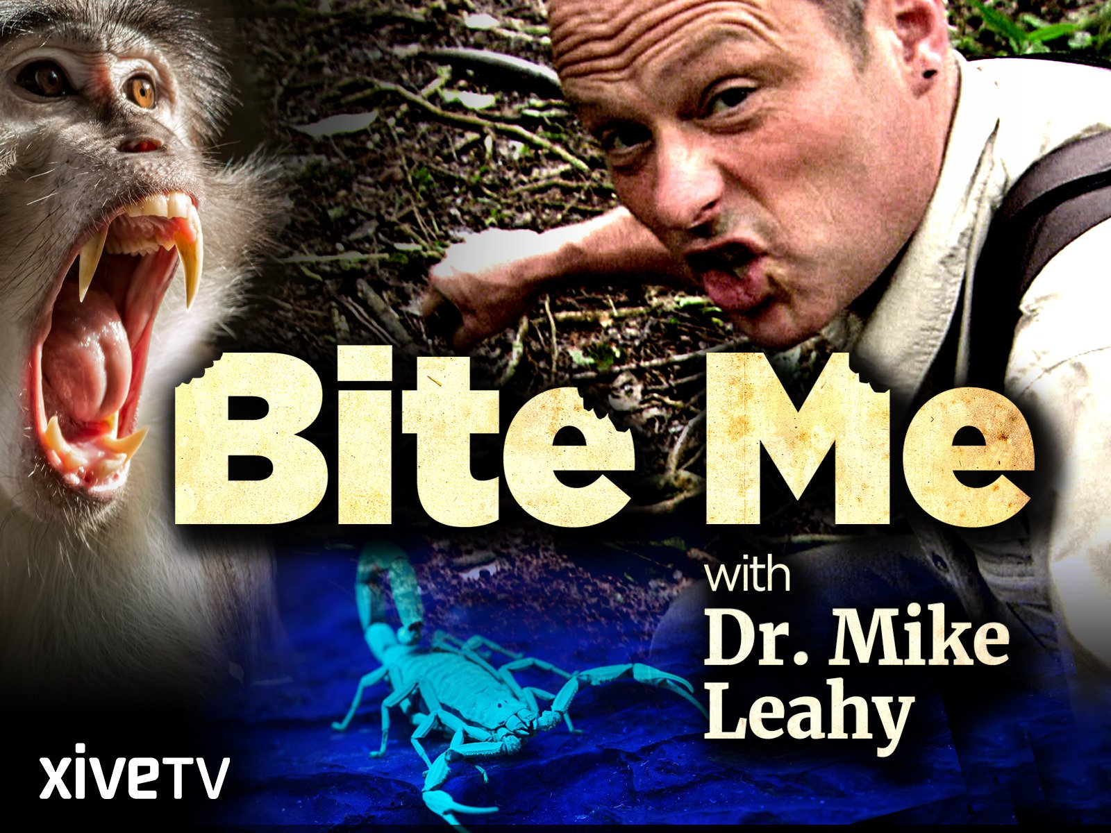 Bite Me with Dr. Mike Leahy - Season 1