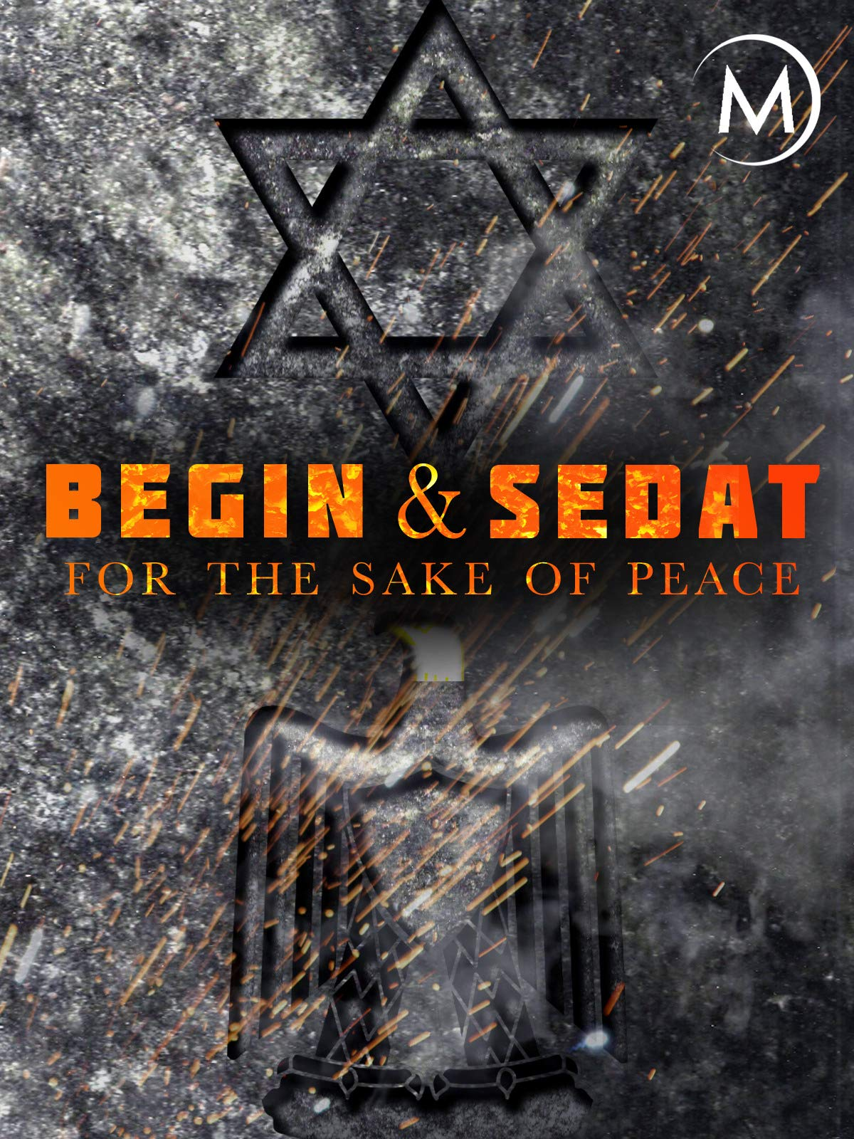 Begin and Sadat: For the Sake of Peace on Amazon Prime Video UK