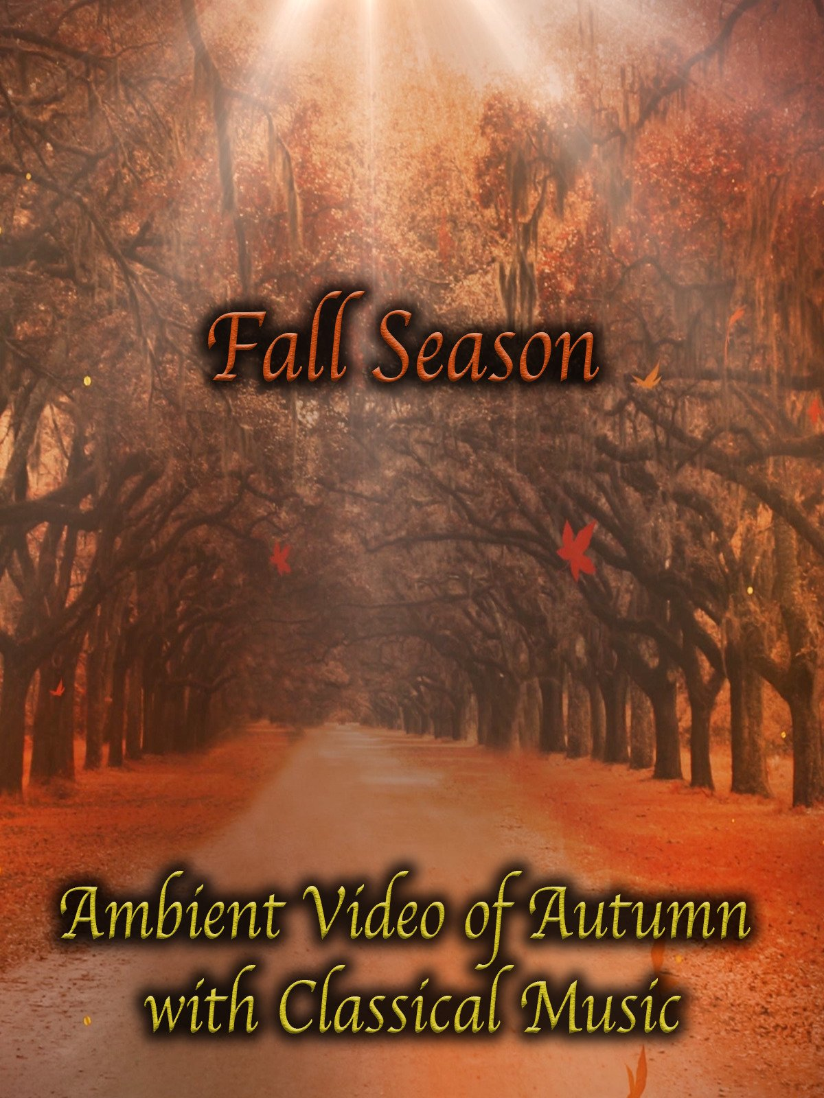 Fall Season Ambient Video of Autumn with Classical Music