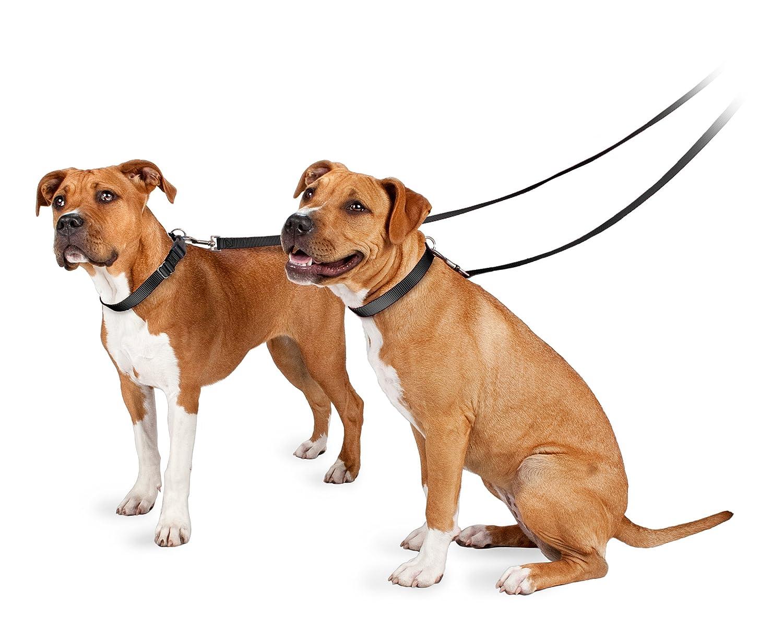 Поводок для собак Petsafe Pet Leash
