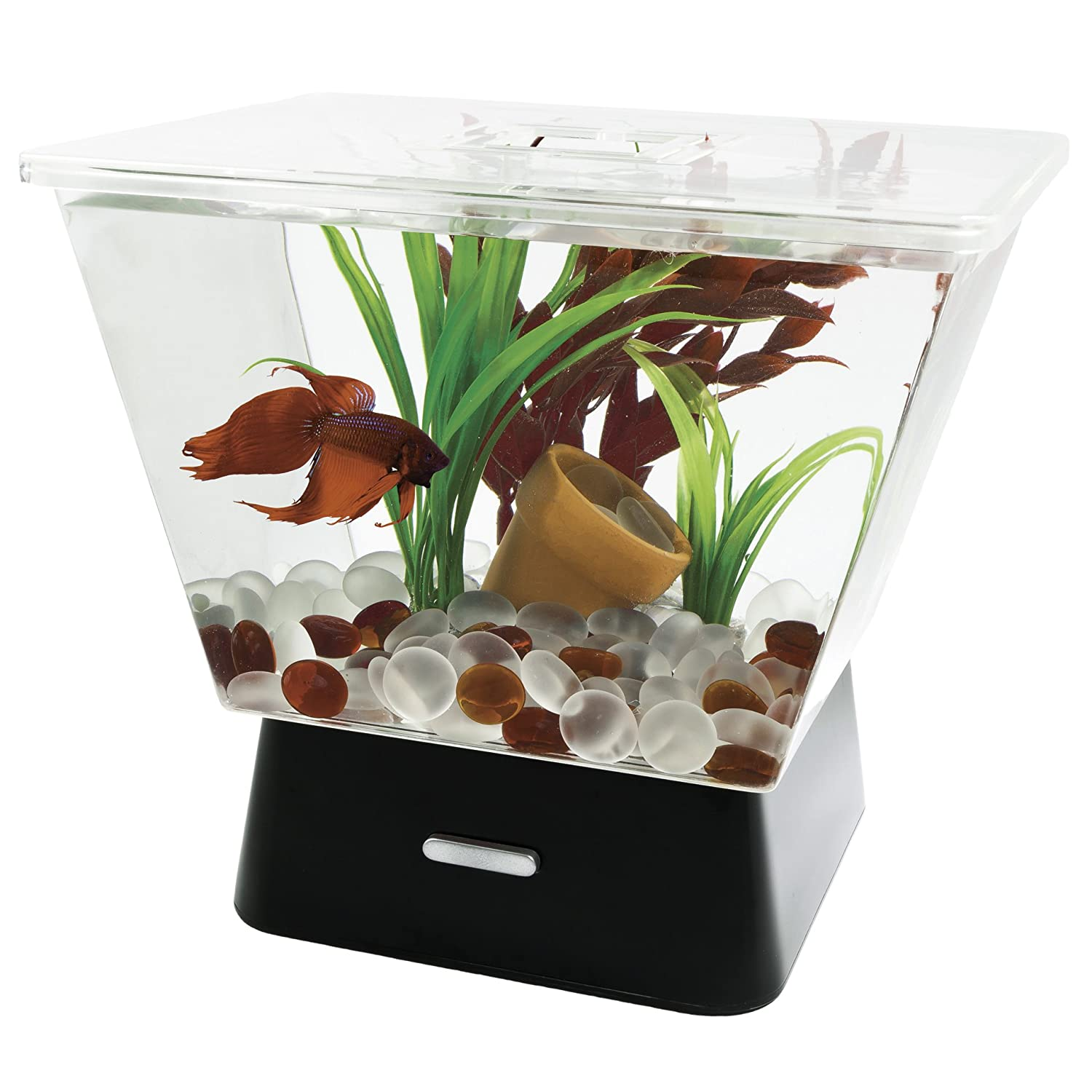Fish for aquarium online - Buy Tetra 29050 Led Betta Tank 1 Gallon Online At Low Prices In India Amazon In