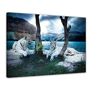 Bilderdepot24 Keilrahmenbild Tiger II XXL  120x90 cm 1 teilig  fertig gerahmt, direkt vom Hersteller    Kundenbewertung und Beschreibung