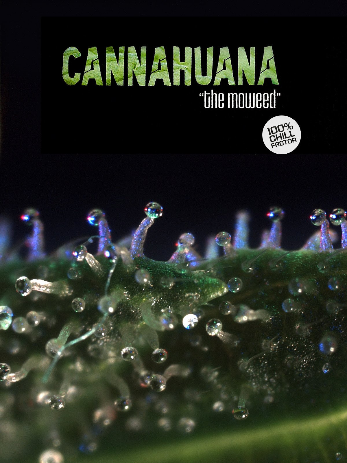 Cannahuana the Moweed on Amazon Prime Instant Video UK