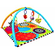 Sassy Discover And Crawl Sensory Tunnel Baby Gear And