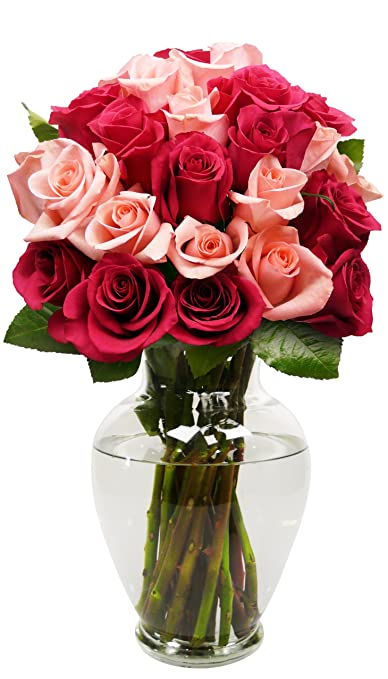 24 Long Stem Blushing Beauty Rose Bouquet   With Vase