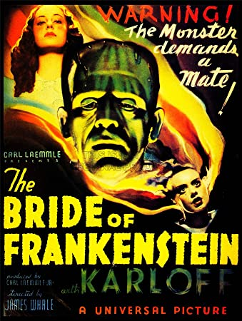 MOVIE FILM BRIDE FRANKENSTEIN BORIS KARLOFF MONSTER HORROR WHALE USA 30x40 cms ART POSTER PRINT PICTURE CC6382