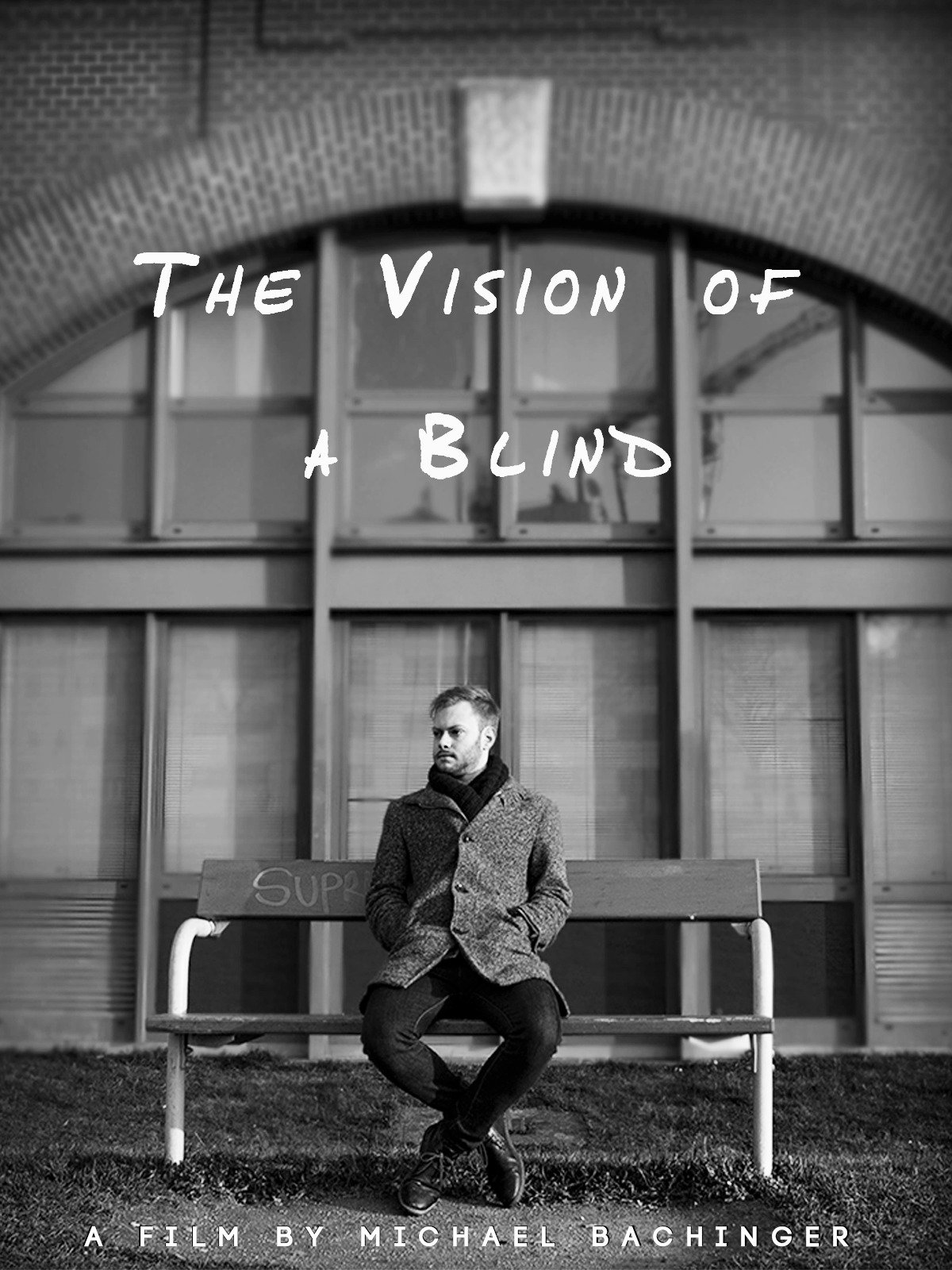 The Vision of a Blind