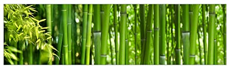 mySPOTTI  251015 profix Bambus, Kuchenruckwand, 220 x 60 cm