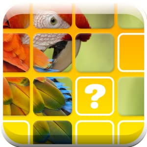 Pop The Pic by Fly Fun Games