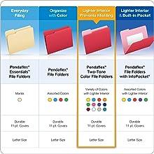 Pendaflex Two-Tone Color File Folders, Letter Size, 1/3 Cut, Orange, 100 per Box (152 1/3 ORA)