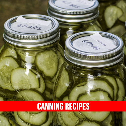 Canning Recipes For preserving (Sweet Pickled Okra compare prices)