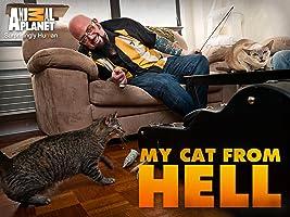 My Cat From Hell Season 3
