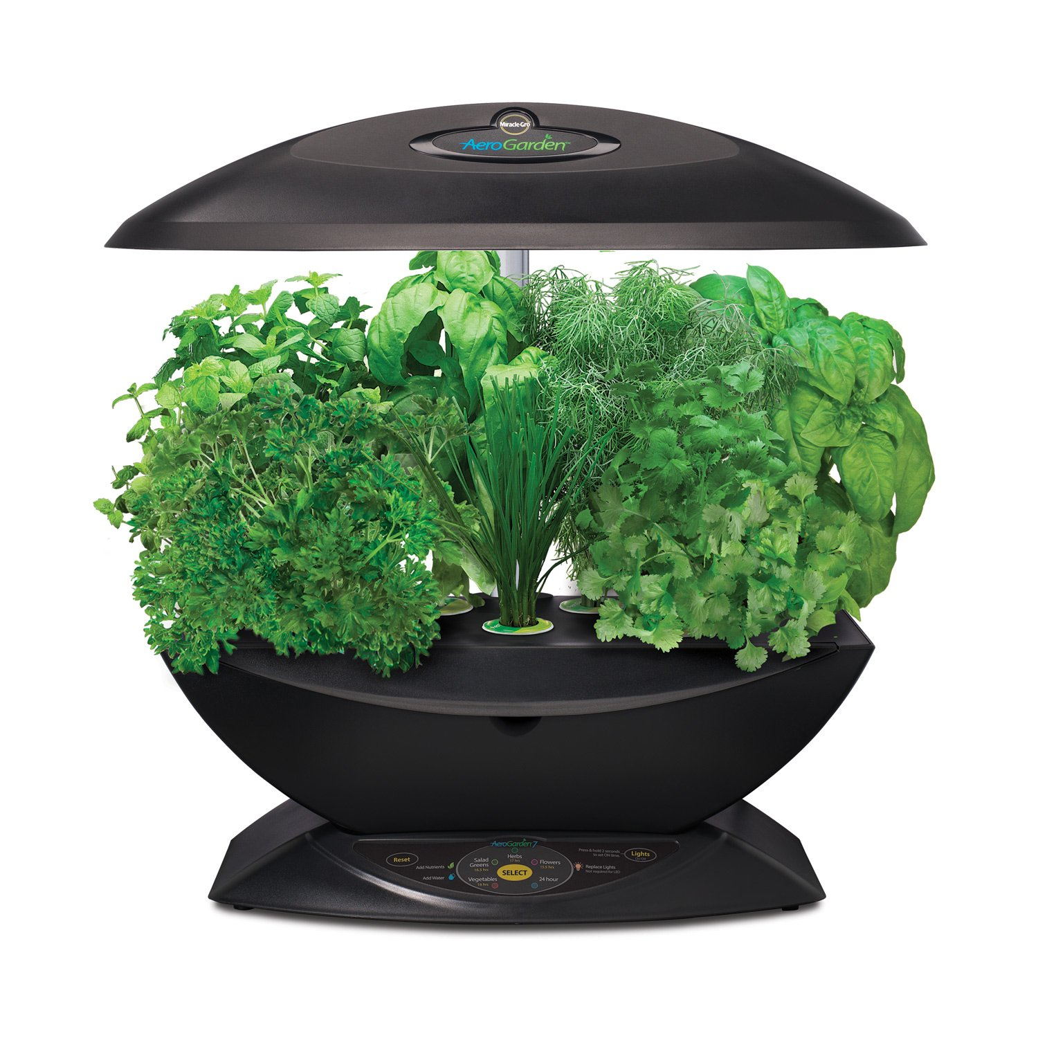Get an Indoor Hydroponics Garden System and Eat Fresh Food